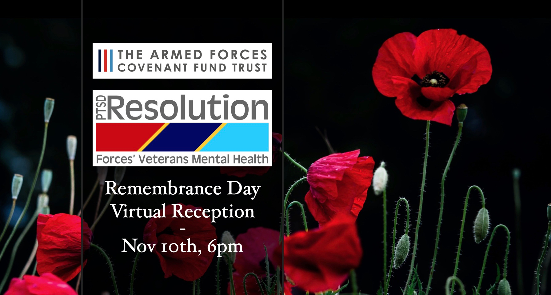 Remembrance Day Virtual Reception